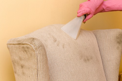 Reasons To Choose Professional Expert Services For Upholstery Cleaning