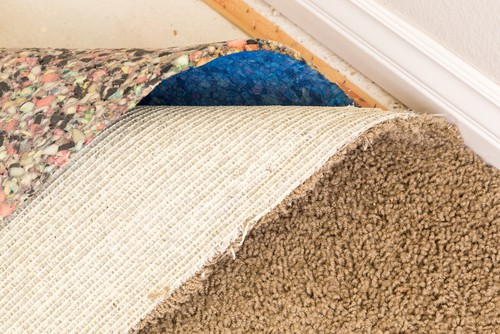 remove-carpet-padding